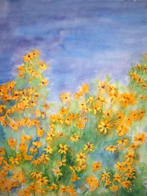 Gelbe margeriten